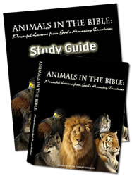 Animals in the Bible Combo Pack